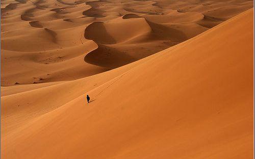 """Résultat de recherche d'images pour """"solitudes stériles"""""""