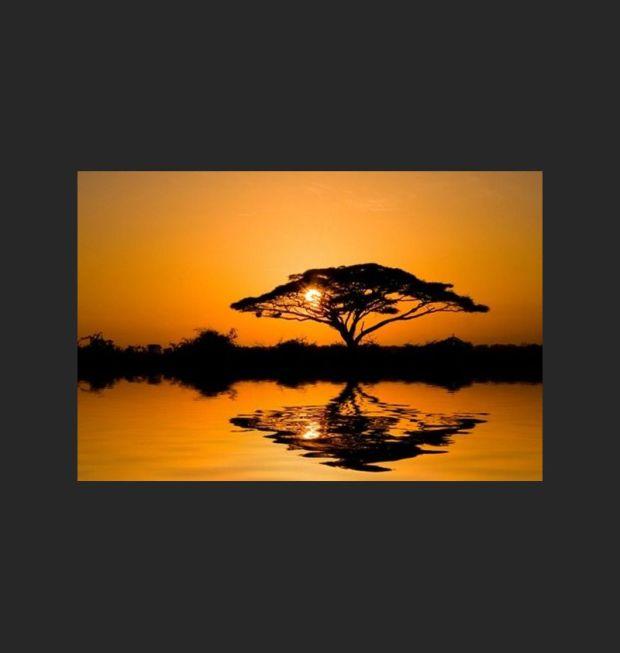 tableau-paysage-toile-arbre-de-la-savane-africaine-au-coucher-de-soleil.jpg