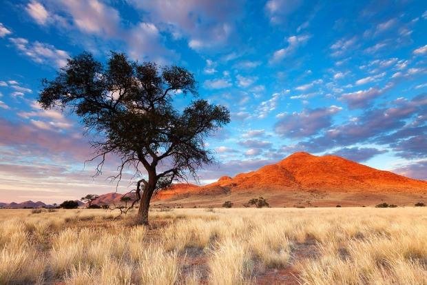 namibia-landscape-33.jpg